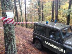 Disboscamento abusivo a Caloveto, tre persone denunciate