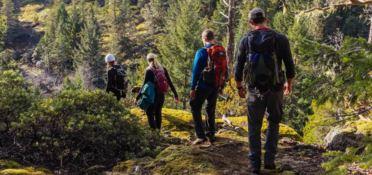 Sulle orme di San Francesco, escursioni tra fede e natura