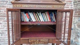 Rischia di naufragare la Little Free Library di Cosenza