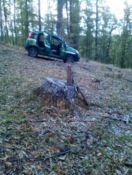 Ruba legna dalle Foreste Rossanesi, arrestato dai carabinieri