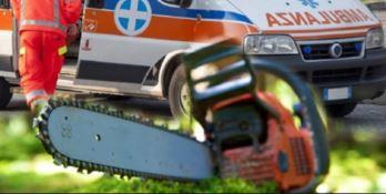 Francavilla Marittima, si ferisce con la motosega: muore 16enne