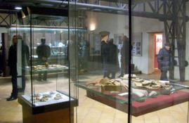 La guerra dei reperti preistorici: «Il museo di Lamezia li restituisca a Vibo»
