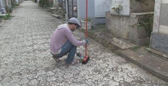 Degrado al cimitero di Vibo, i cittadini si attivano per pulire l'area