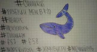 Torna l'incubo Blue Whale: ragazza soccorsa nel Brindisino