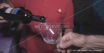 Vini di Calabria: la qualità e gli antichi sapori al centro del Cirò wine festival -VIDEO