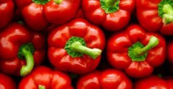 Roggiano Gravina celebra il peperone, l'ortaggio calabrese punta al dop