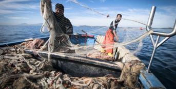 Fermo pesca su Ionio e Tirreno per 30 giorni: stop al pesce fresco in tavola
