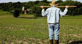 Il villaggio del contadino della Coldiretti ottiene consensi