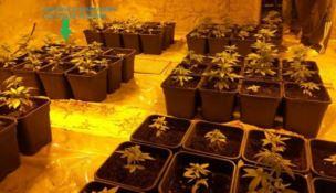 Oltre 38mila dosi di droga, arrestato 54enne di Ardore