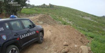 Viola norme sulla tracciabilità, multa da 300mila euro per un allevatore