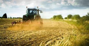 Agricoltura in ginocchio per il maltempo, la Coldiretti lancia l'allarme