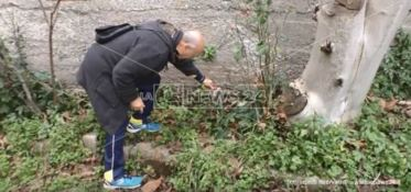 Cittanova, per nonna Concetta nessuna clemenza (VIDEO)