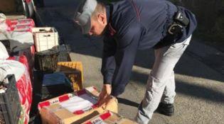 San Benedetto Ullano: sequestrati 150 chili di formaggi e salumi