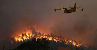 Pollino, mille volontari per prevenire gli incendi
