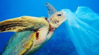 A Corigliano-Rossano la tappa ionica del Plastic Free Tour - VIDEO