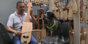 Torniamo alla lira… calabrese: l'antico strumento rivive con due artigiani - VIDEO
