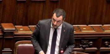Salvini: «I delinquenti arrestati restino in galera»