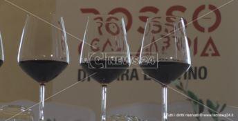 Cirò capitale calabrese del vino e dell'Enoteca Regionale