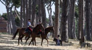 I Carabinieri a cavallo presidiano il parco della Sila
