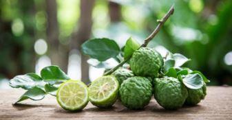 I benefici del bergamotto, il Whatsapp di Aldo Viscomi