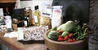 Cooking, comfort, care: le tre C della Dieta mediterranea contro i tumori