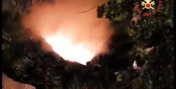 Incendiato albero secolare a Chiaravalle