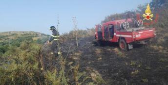 Brucia il Catanzarese: numerosi interventi dei vigili del fuoco