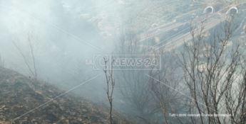 Incendio minaccia abitazioni a Squillace, disagi alla circolazione