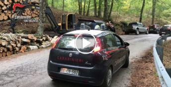 Disboscamento abusivo, sei denunce nel vibonese - VIDEO