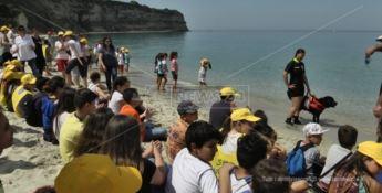 Spiagge pulite, l'iniziativa di Legambiente fa tappa a Ricadi - VIDEO