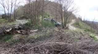 Taglio di bosco irregolare, una denuncia e 60 mila euro di multa