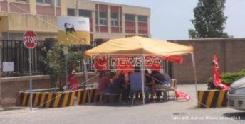 Senza stipendio da tre mesi, la protesta dei vigilantes a Crotone - VIDEO