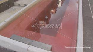 Festa della Donna, a Cosenza fontane rosso sangue e messaggi antiviolenza (VIDEO)