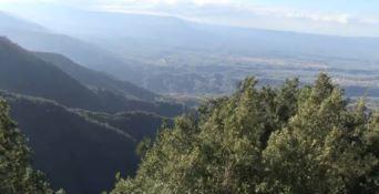 Simone Canale, il pentito che fa tremare il clan Alvaro (VIDEO)