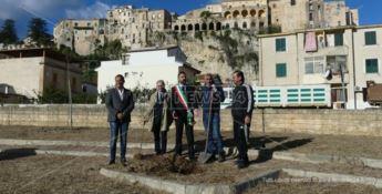 La cerimonia di piantamento
