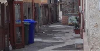 Catanzaro Lido invasa dai topi: la rabbia dei residenti e commercianti