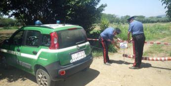 Rifiuti e opere abusive: a Scalea sequestrata area da 14mila mq