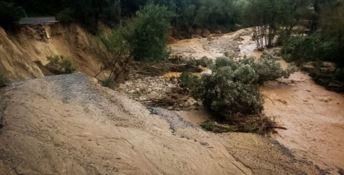 Alluvioni, Pedà (FI): «La sorveglianza idraulica deve funzionare»