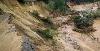 Agricoltura devastata dal maltempo, Coldiretti: «Danni per 100milioni»