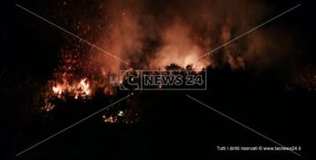 Paura a Catanzaro, scoppia un incendio sulle colline di Germaneto