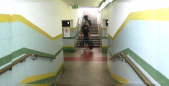 «La stazione di Lamezia è off limits per i disabili»