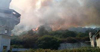 Vasto incendio a Copanello di Stalettì