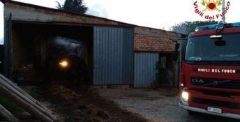 San Gregorio, incendio in un capannone agricolo: due maiali morti