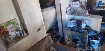 Reggio, cani denutriti e nel degrado in casa di un'anziana: salvati
