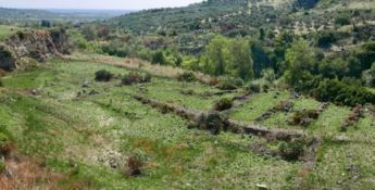 Scoperti ruderi e insediamenti antichi a Squillace