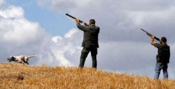 Caccia, l'allarme del Wwf: «La fauna calabrese è in pericolo»