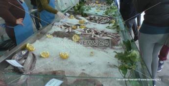 Cetraro, amministratori vendono il pesce per rilanciare il mercato ittico
