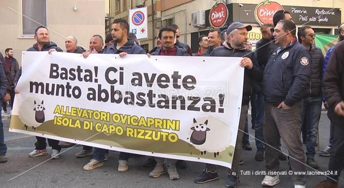 La protesta dei pastori a Crotone