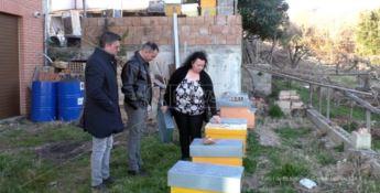 Cercasi api per azienda per tre volte derubata e vandalizzata