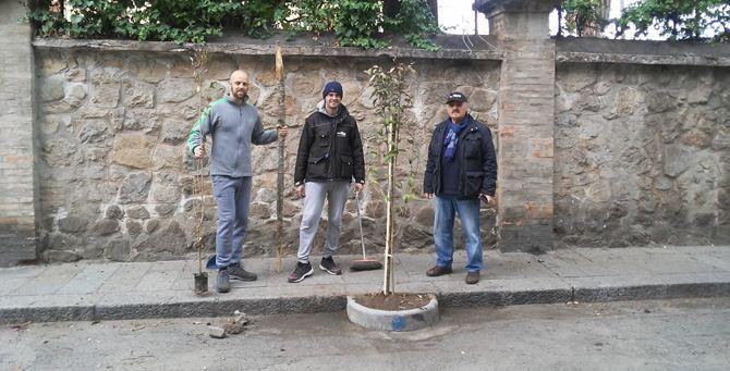 I volontari del Meetup piantano gli alberi